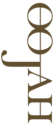 web-logo_light@4x